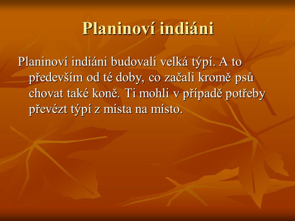 Planinoví indiáni Planinoví indiáni budovali velká týpí.