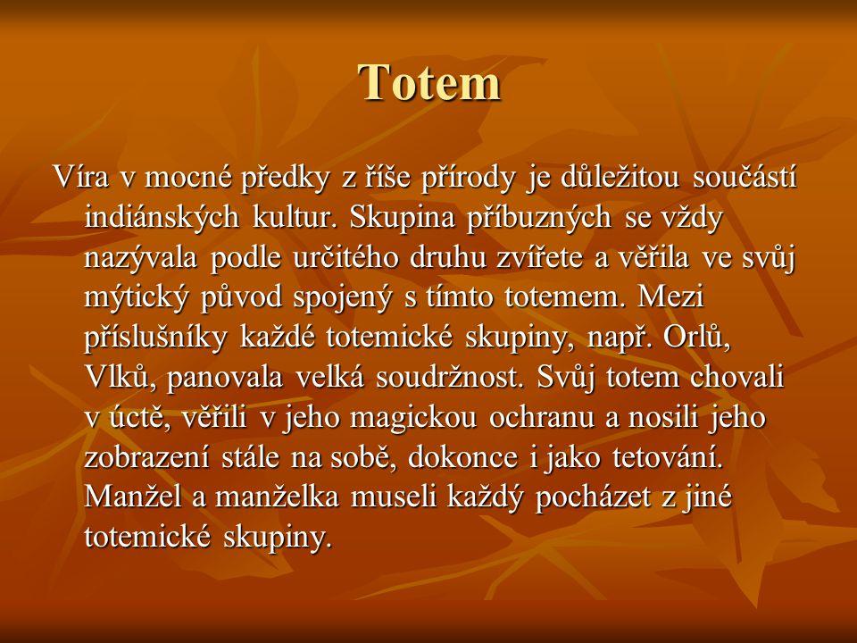 Totem Víra v mocné předky z říše přírody je důležitou součástí indiánských kultur.