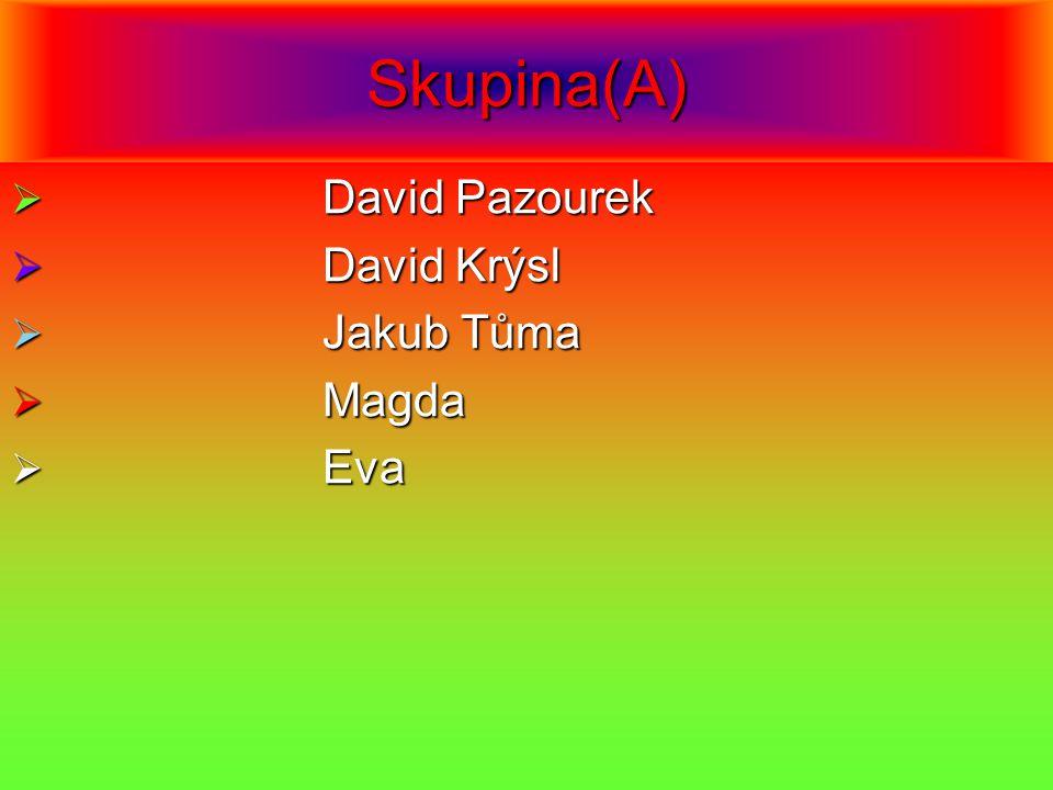 Skupina(A)  David Pazourek  David Krýsl  Jakub Tůma  Magda  Eva