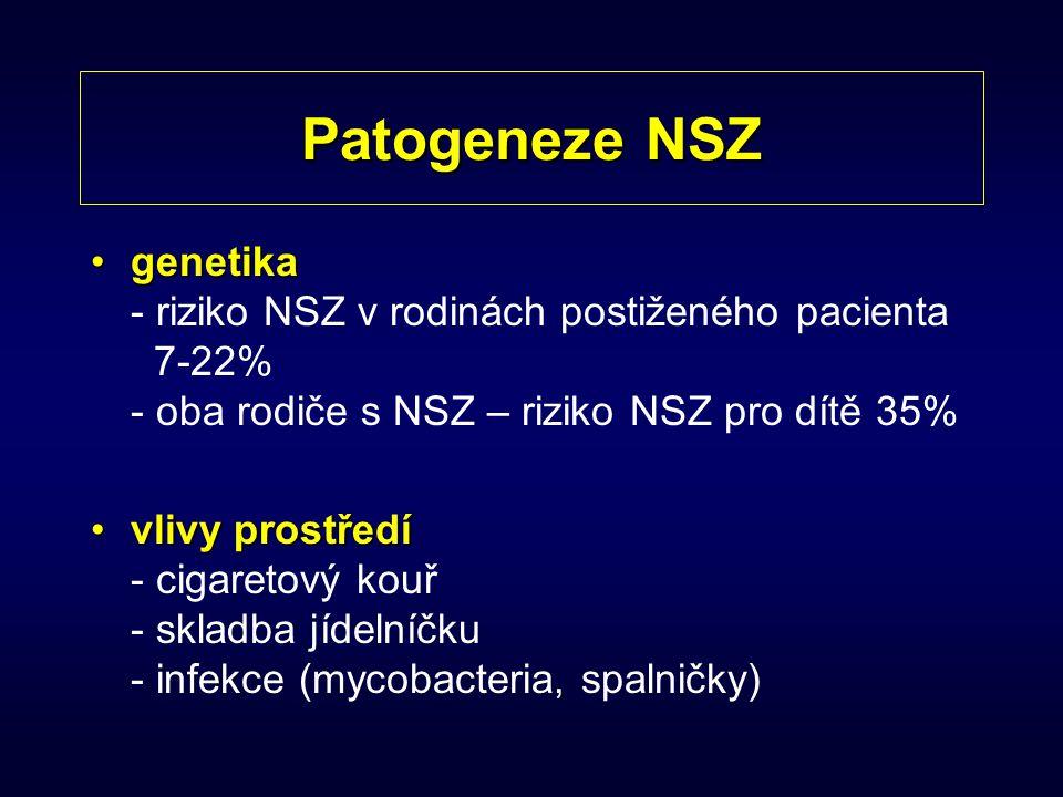 Patogeneze NSZ genetikagenetika - riziko NSZ v rodinách postiženého pacienta 7-22% - oba rodiče s NSZ – riziko NSZ pro dítě 35% vlivy prostředívlivy p