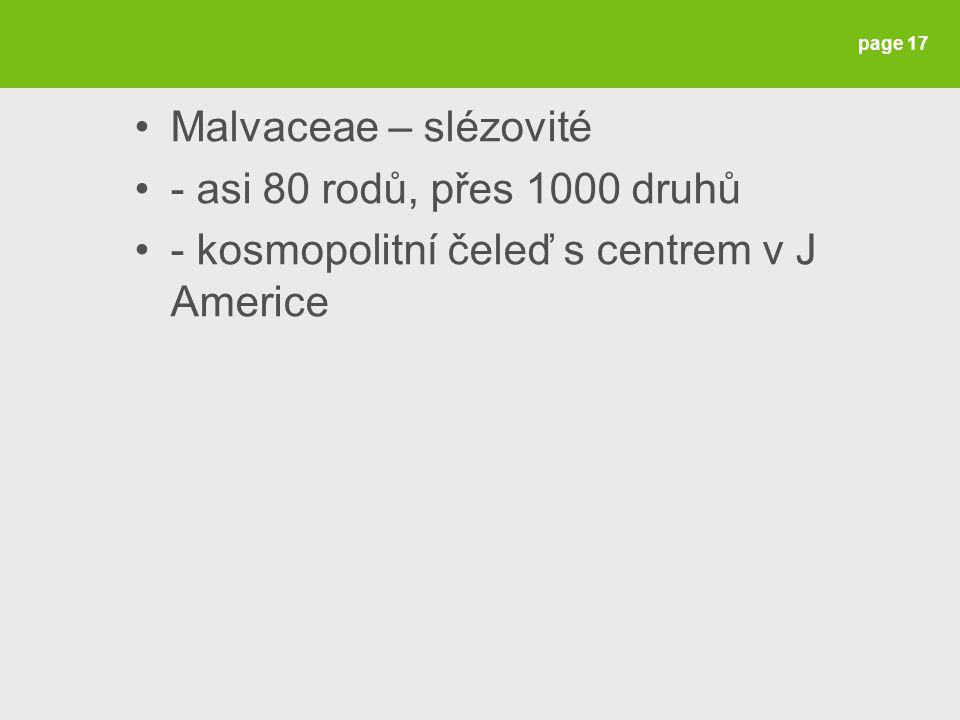 Malvaceae – slézovité - asi 80 rodů, přes 1000 druhů - kosmopolitní čeleď s centrem v J Americe page 17