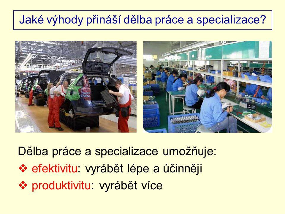 Jaké výhody přináší dělba práce a specializace.