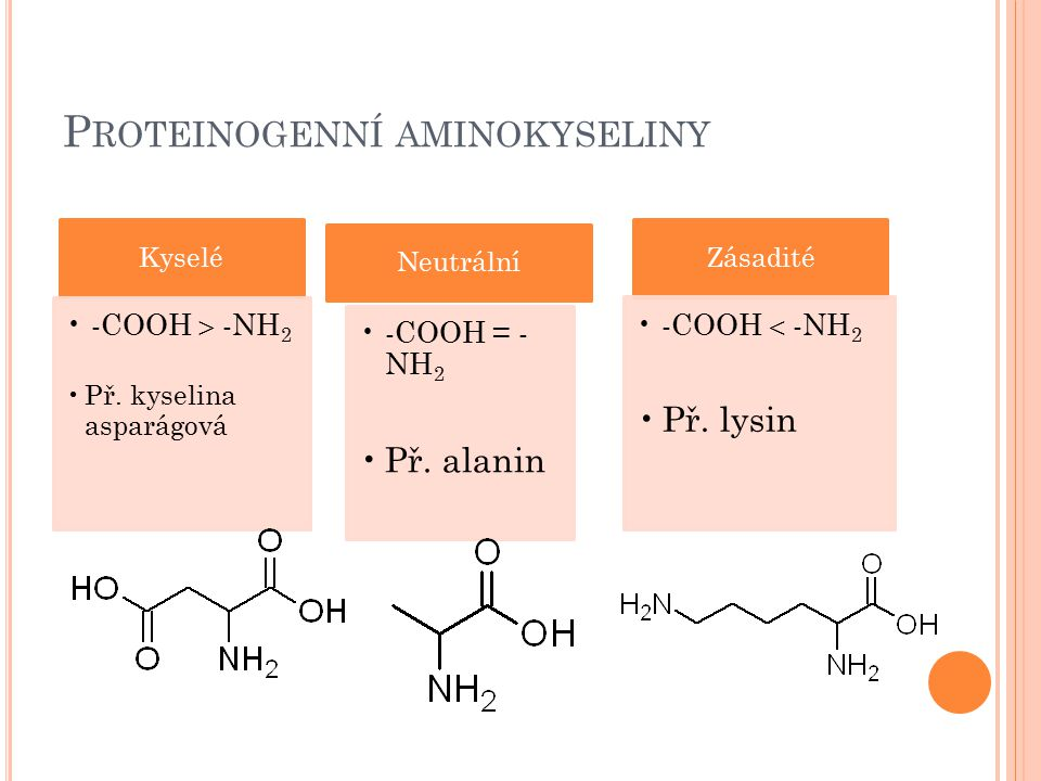 P ROTEINOGENNÍ AMINOKYSELINY Kyselé -COOH  - NH2 Př. kyselina asparágová Neutrální -COOH = - NH2 Př. alanin Zásadité -COOH  -NH2 Př. lysin