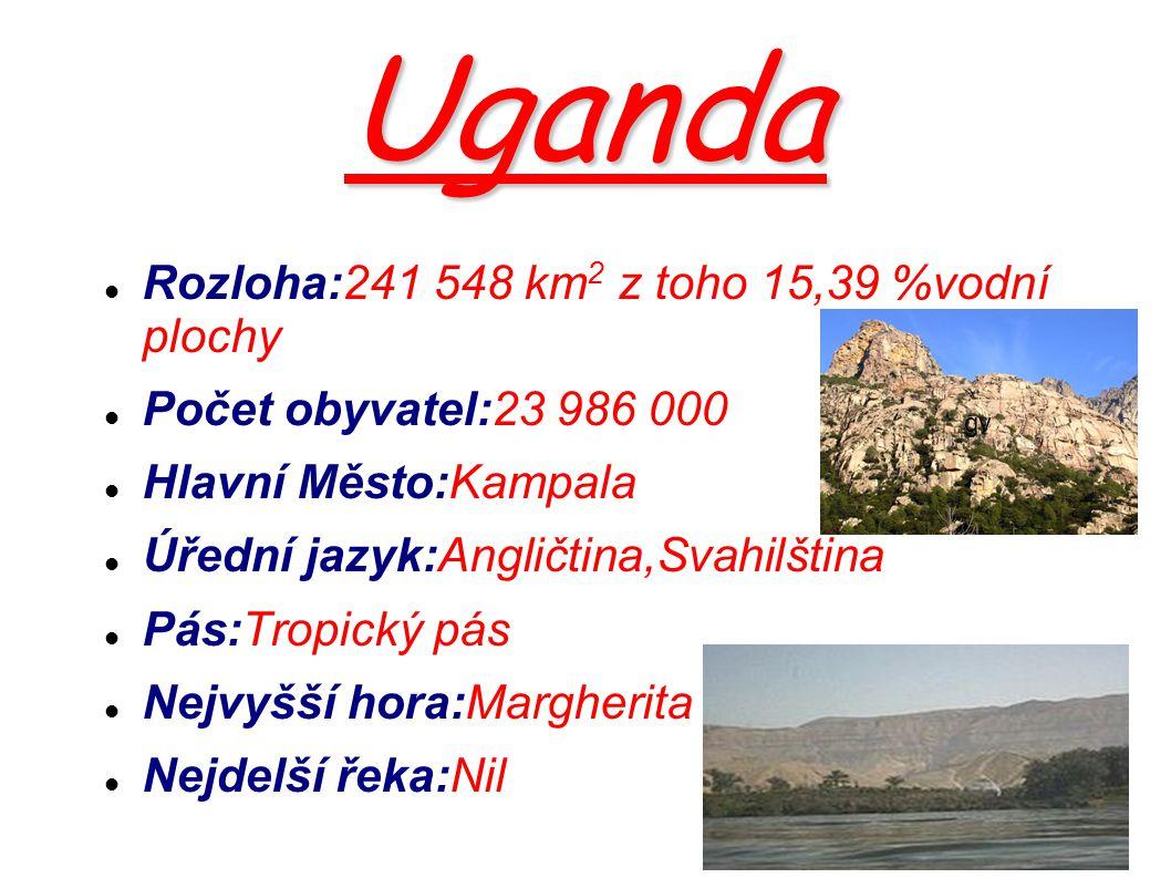 Uganda Rozloha:241 548 km 2 z toho 15,39 %vodní plochy Počet obyvatel:23 986 000 Hlavní Město:Kampala Úřední jazyk:Angličtina,Svahilština Pás:Tropický