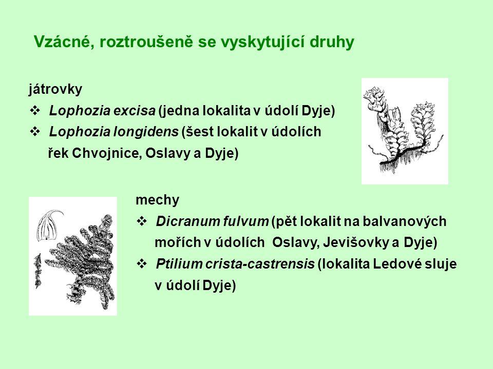 játrovky v Lophozia excisa (jedna lokalita v údolí Dyje) v Lophozia longidens (šest lokalit v údolích řek Chvojnice, Oslavy a Dyje) mechy v Dicranum f