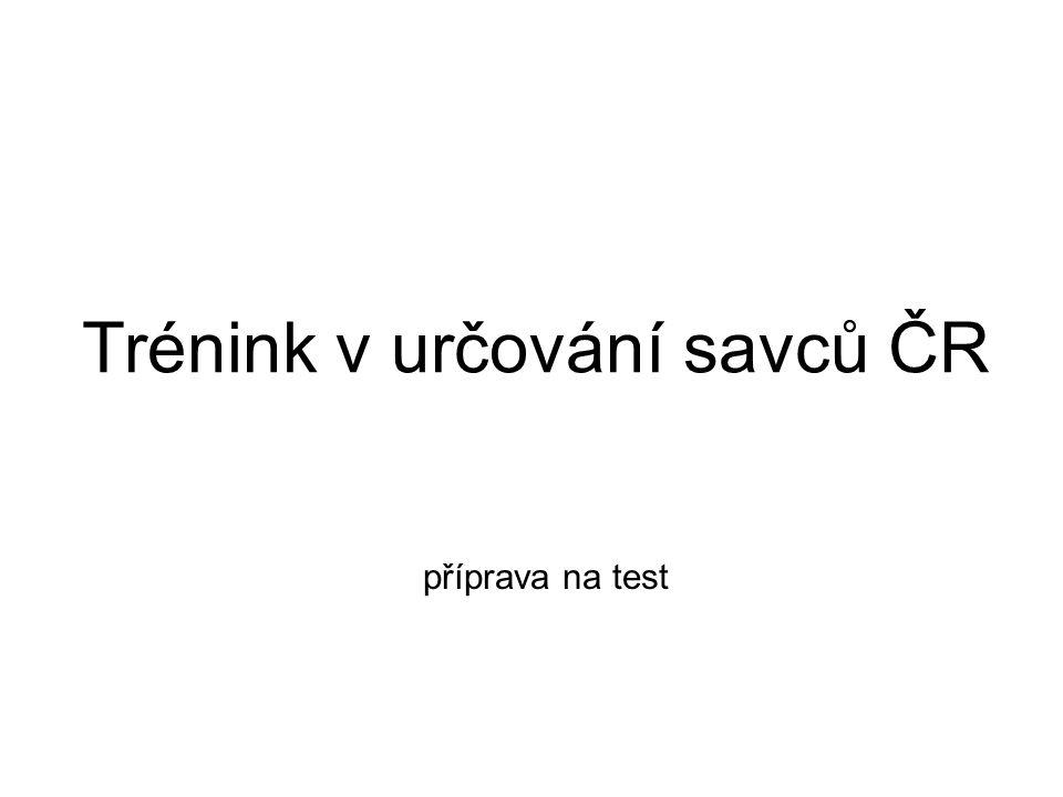 Trénink v určování savců ČR příprava na test