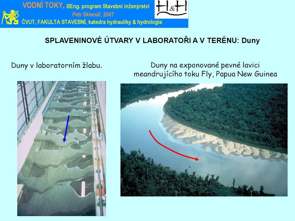 SPLAVENINOVÉ ÚTVARY V LABORATOŘI A V TERÉNU: Duny Duny na exponované pevné lavici meandrujícího toku Fly, Papua New Guinea Duny v laboratorním žlabu.