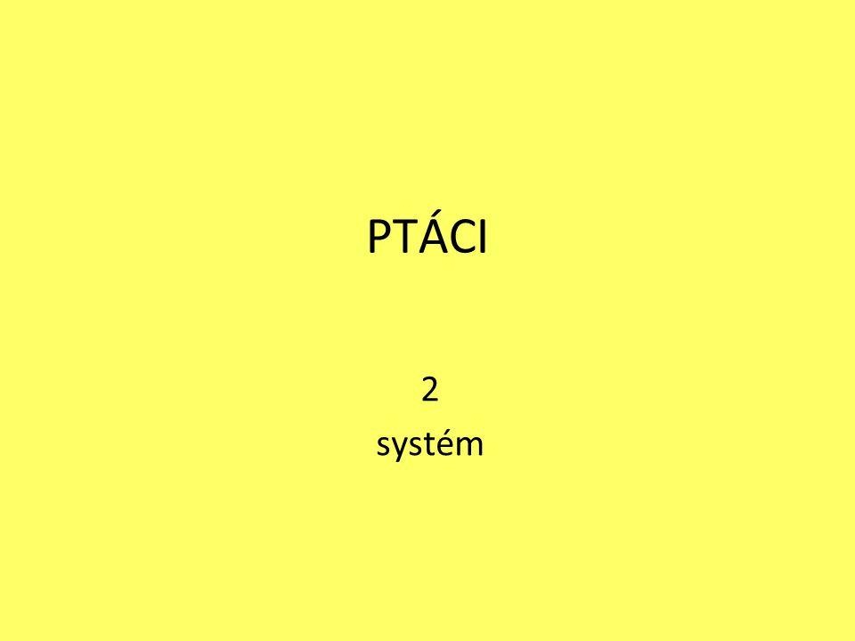 PTÁCI 2 systém