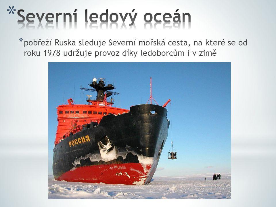* pobřeží Ruska sleduje Severní mořská cesta, na které se od roku 1978 udržuje provoz díky ledoborcům i v zimě