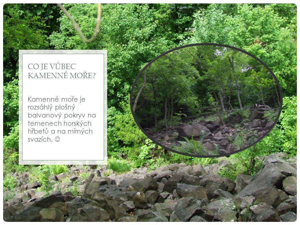 Kamenné moře je rozsáhlý plošný balvanový pokryv na temenech horských hřbetů a na mírných svazích. CO JE VŮBEC KAMENNÉ MOŘE?