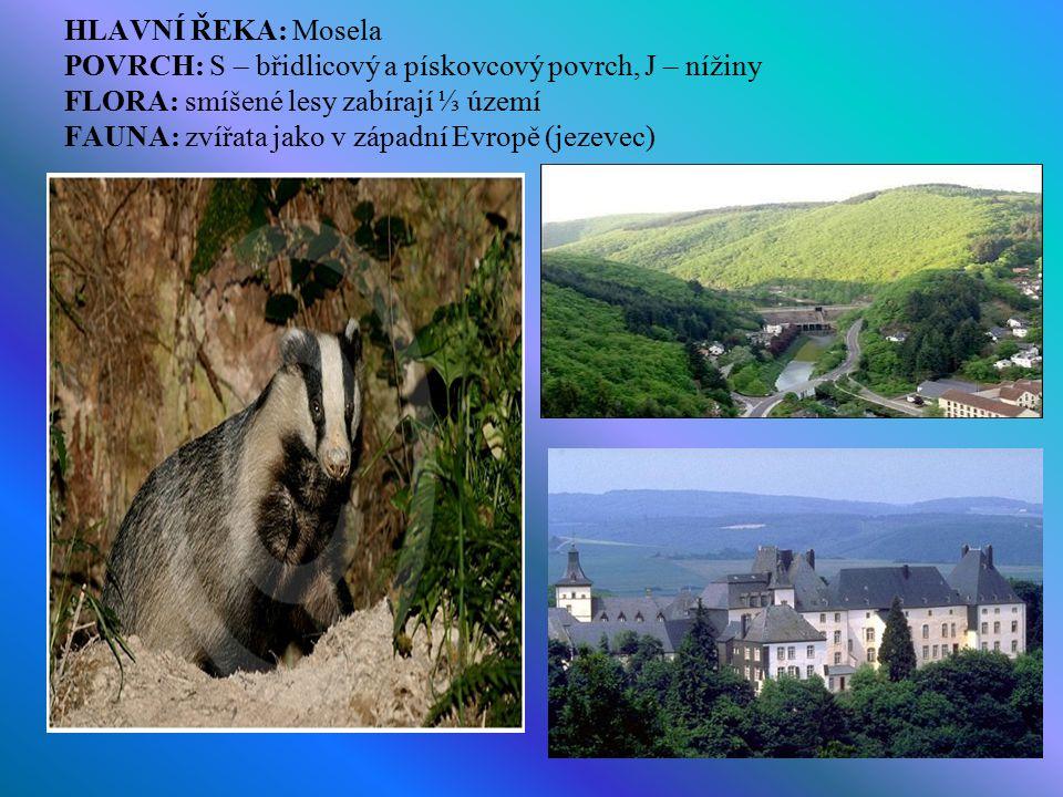 HLAVNÍ ŘEKA: Mosela POVRCH: S – břidlicový a pískovcový povrch, J – nížiny FLORA: smíšené lesy zabírají ⅓ území FAUNA: zvířata jako v západní Evropě (