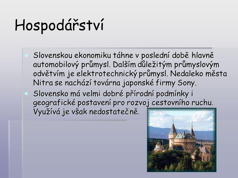 Hospodářství  Slovenskou ekonomiku táhne v poslední době hlavně automobilový průmysl. Dalším důležitým průmyslovým odvětvím je elektrotechnický průmy
