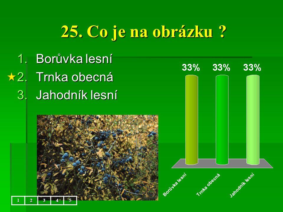 25. Co je na obrázku ? 1.Borůvka lesní 2.Trnka obecná 3.Jahodník lesní 12345