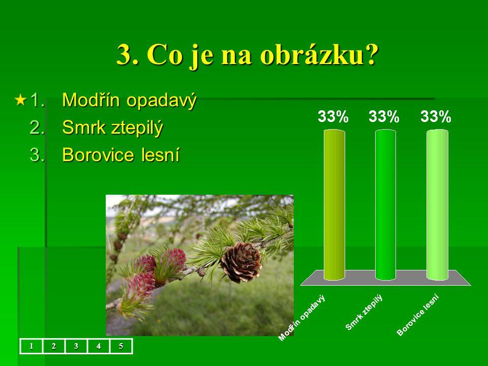 Společenstvo les – přírodověda 4.ročník ZŠ Použitý software: držitel licence – ZŠ J.