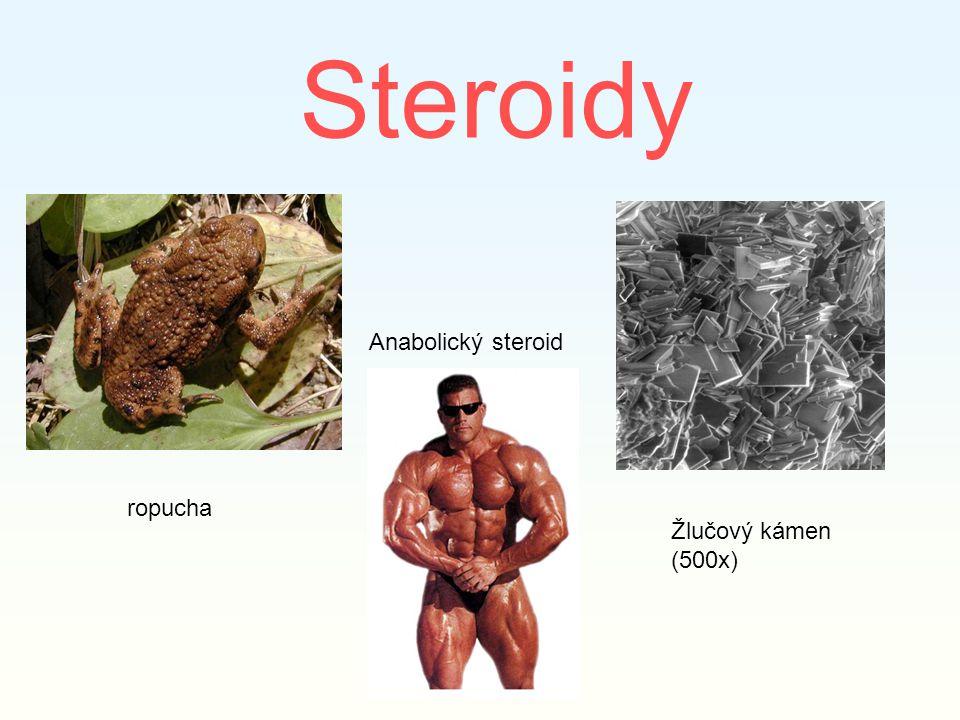 Steroidy Anabolický steroid Žlučový kámen (500x) ropucha