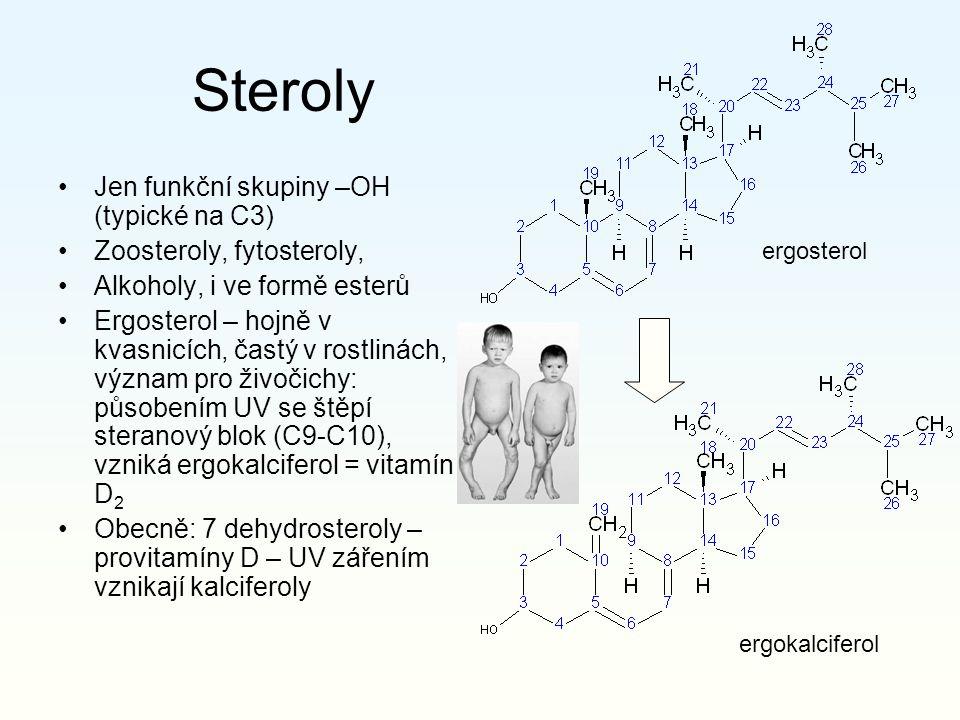 Steroly Jen funkční skupiny –OH (typické na C3) Zoosteroly, fytosteroly, Alkoholy, i ve formě esterů Ergosterol – hojně v kvasnicích, častý v rostlinách, význam pro živočichy: působením UV se štěpí steranový blok (C9-C10), vzniká ergokalciferol = vitamín D 2 Obecně: 7 dehydrosteroly – provitamíny D – UV zářením vznikají kalciferoly ergosterol ergokalciferol