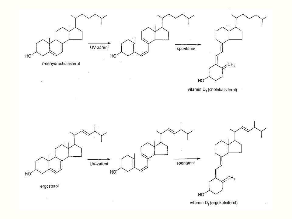 Cholesterol Živočišný, ve všech tkáních V buňkách jako alkohol, nebo ester Nejzastoupenější steroid v lidském těle (100 g, denně syntéza 1g), důležitý pro syntézu dalších steroidů.