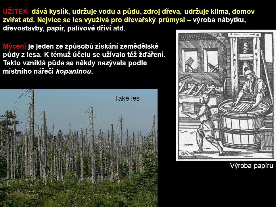 Mýcení je jeden ze způsobů získání zemědělské půdy z lesa.
