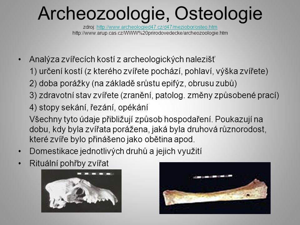 Archeozoologie, Osteologie zdroj: http://www.archeologied47.cz/d47/meziobor/osteo.htm http://www.arup.cas.cz/WWW%20prirodovedecke/archeozoologie.htmhttp://www.archeologied47.cz/d47/meziobor/osteo.htm Analýza zvířecích kostí z archeologických nalezišť 1) určení kostí (z kterého zvířete pochází, pohlaví, výška zvířete) 2) doba porážky (na základě srůstu epifýz, obrusu zubů) 3) zdravotní stav zvířete (zranění, patolog.