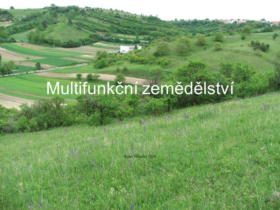 Multifunkční zemědělství ©Jan Moudrý 2006