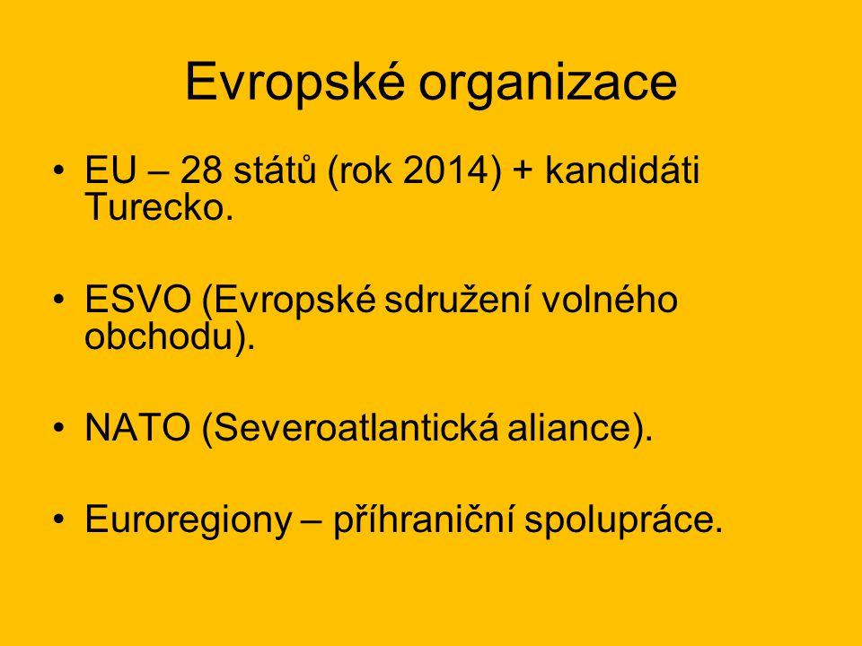 Evropské organizace EU – 28 států (rok 2014) + kandidáti Turecko. ESVO (Evropské sdružení volného obchodu). NATO (Severoatlantická aliance). Euroregio
