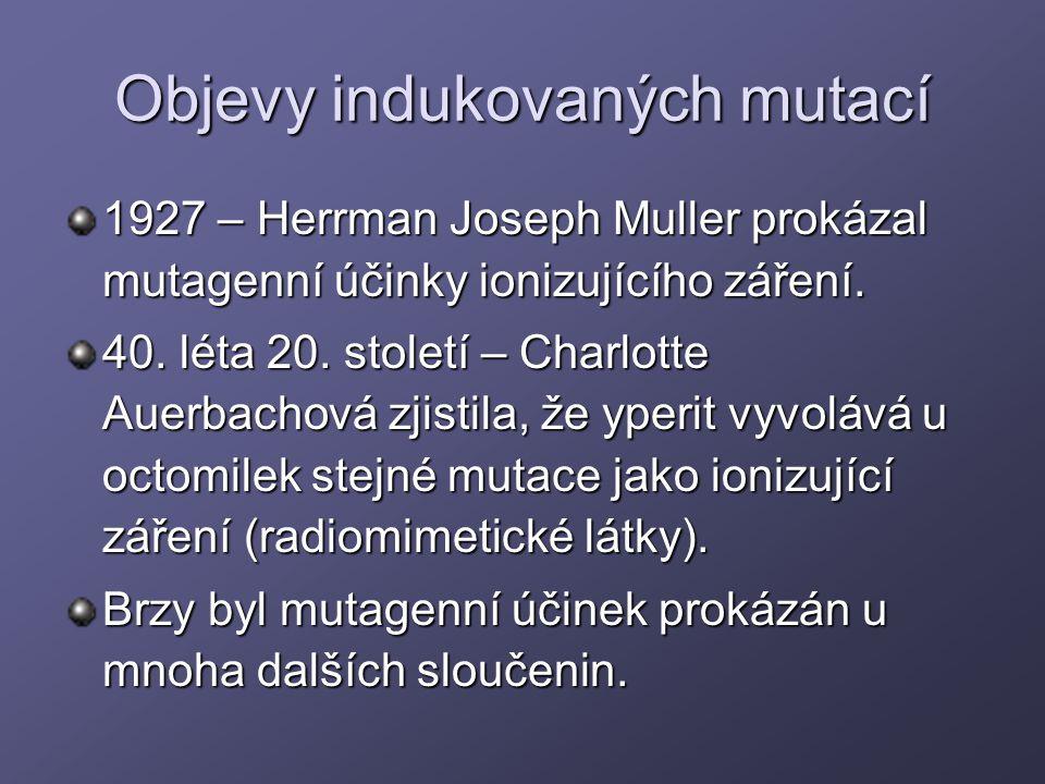 Objevy indukovaných mutací 1927 – Herrman Joseph Muller prokázal mutagenní účinky ionizujícího záření. 40. léta 20. století – Charlotte Auerbachová zj