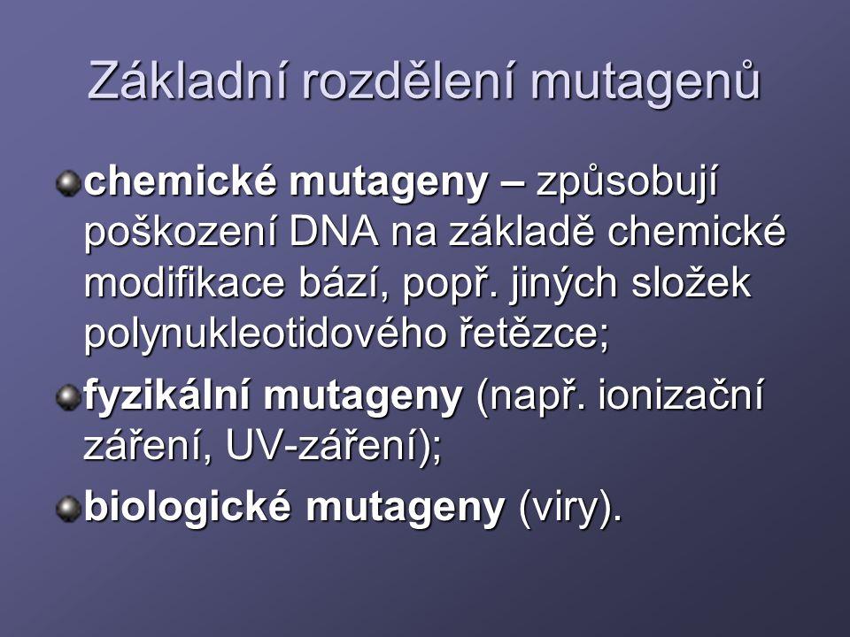 Základní rozdělení mutagenů chemické mutageny – způsobují poškození DNA na základě chemické modifikace bází, popř. jiných složek polynukleotidového ře