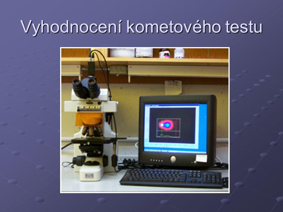 Vyhodnocení kometového testu