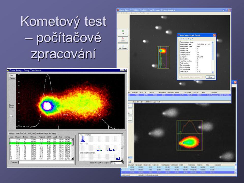 Kometový test – počítačové zpracování