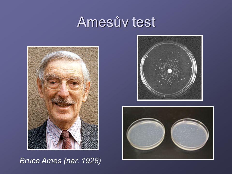 Amesův test Bruce Ames (nar. 1928)