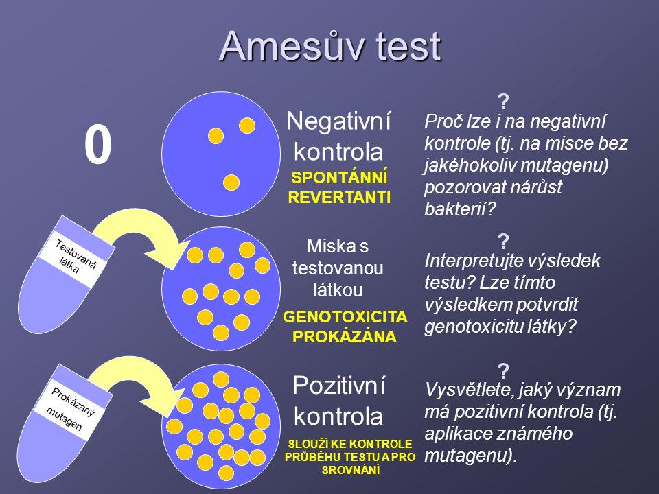 Amesův test Testovaná látka Prokázaný mutagen 0 Negativní kontrola Pozitivní kontrola Miska s testovanou látkou GENOTOXICITA PROKÁZÁNA Proč lze i na n