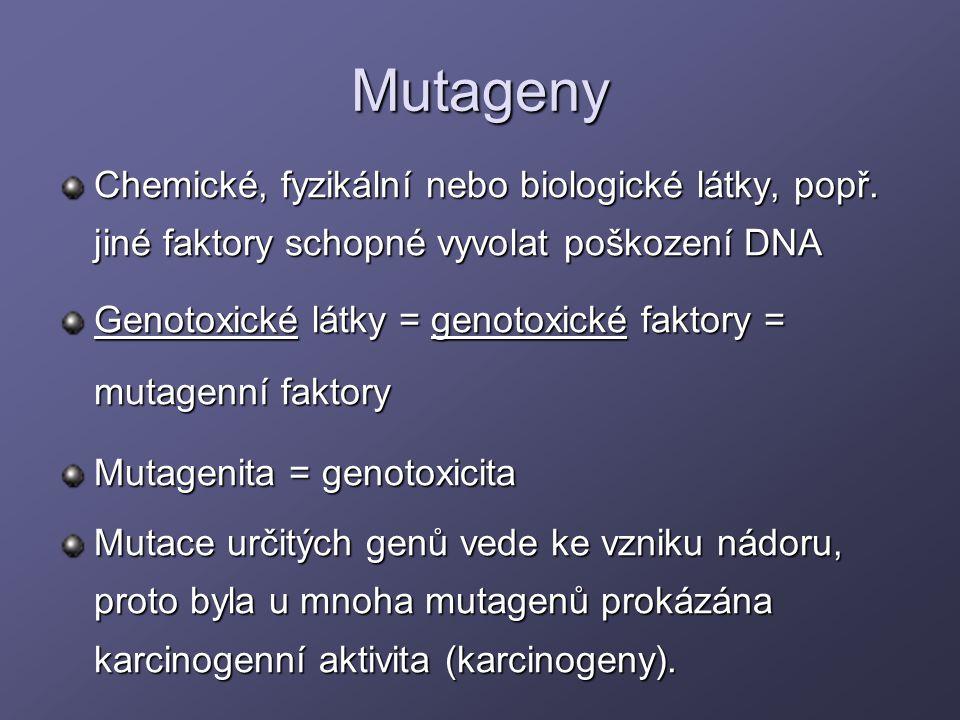Mutageny Chemické, fyzikální nebo biologické látky, popř. jiné faktory schopné vyvolat poškození DNA Genotoxické látky = genotoxické faktory = mutagen