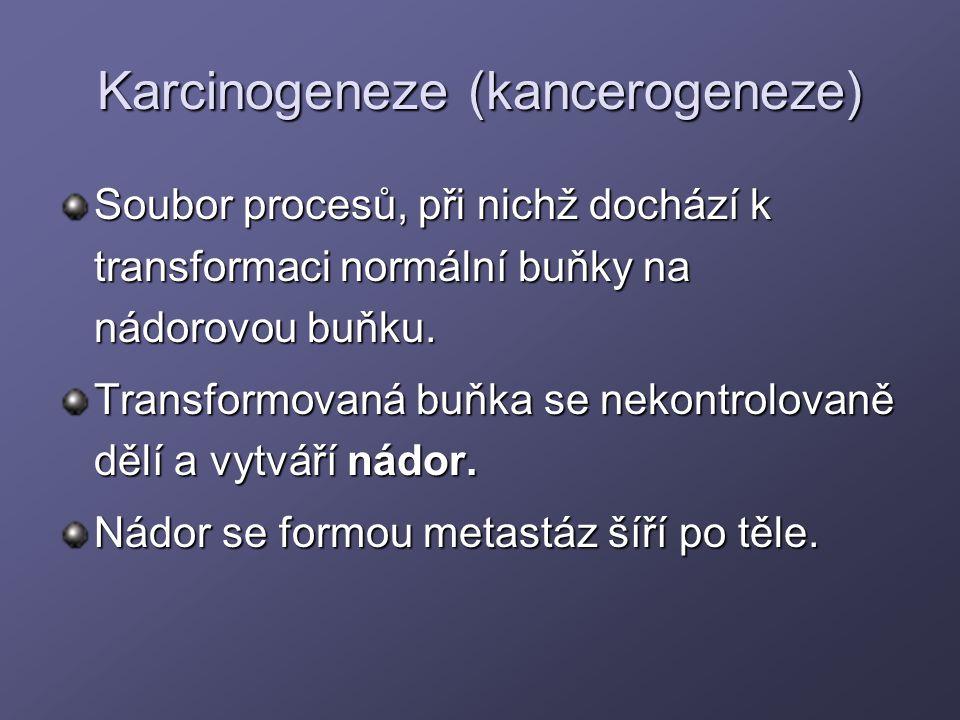 Karcinogeneze (kancerogeneze) Soubor procesů, při nichž dochází k transformaci normální buňky na nádorovou buňku. Transformovaná buňka se nekontrolova