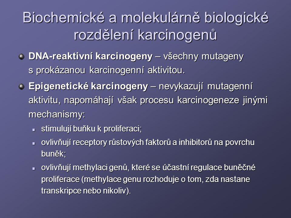 Biochemické a molekulárně biologické rozdělení karcinogenů DNA-reaktivní karcinogeny – všechny mutageny s prokázanou karcinogenní aktivitou. Epigeneti