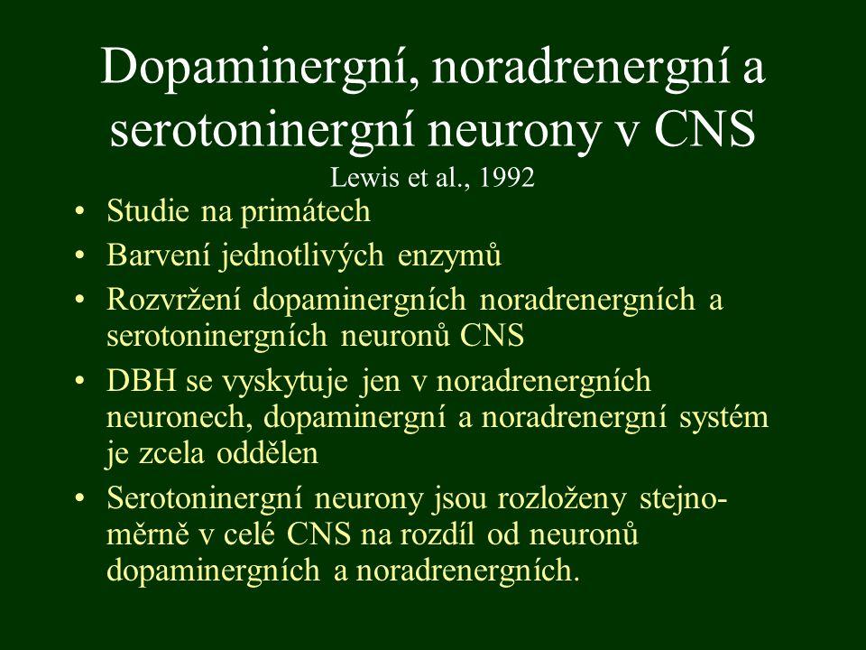 Dopaminergní, noradrenergní a serotoninergní neurony v CNS Lewis et al., 1992 Studie na primátech Barvení jednotlivých enzymů Rozvržení dopaminergních