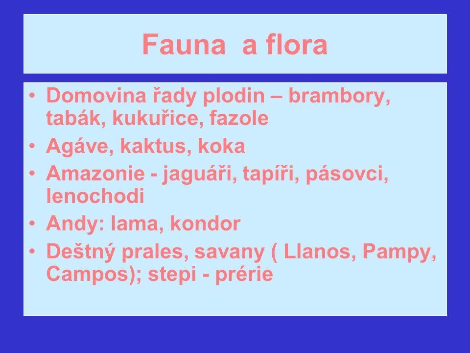 Fauna a flora Domovina řady plodin – brambory, tabák, kukuřice, fazole Agáve, kaktus, koka Amazonie - jaguáři, tapíři, pásovci, lenochodi Andy: lama,