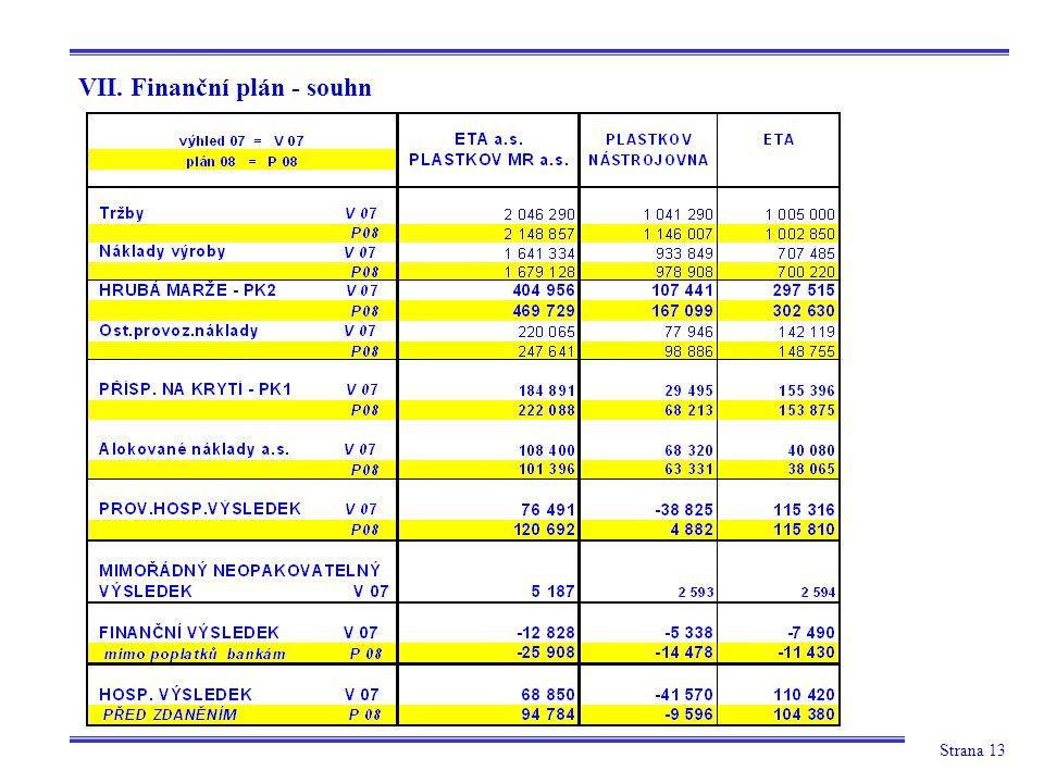 Strana 13 VII. Finanční plán - souhn