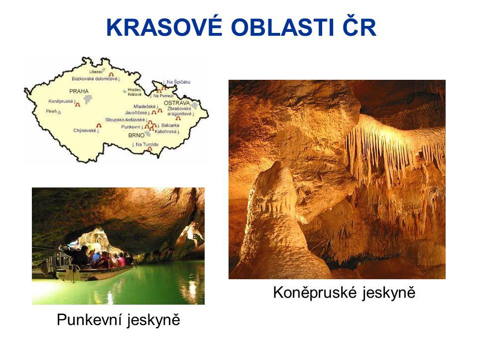 PRVOHORY  v mladších prvohorách u nás vzniklo černé uhlí  Vyhledejte na mapě hlavní oblast těžby černého uhlí v ČR: