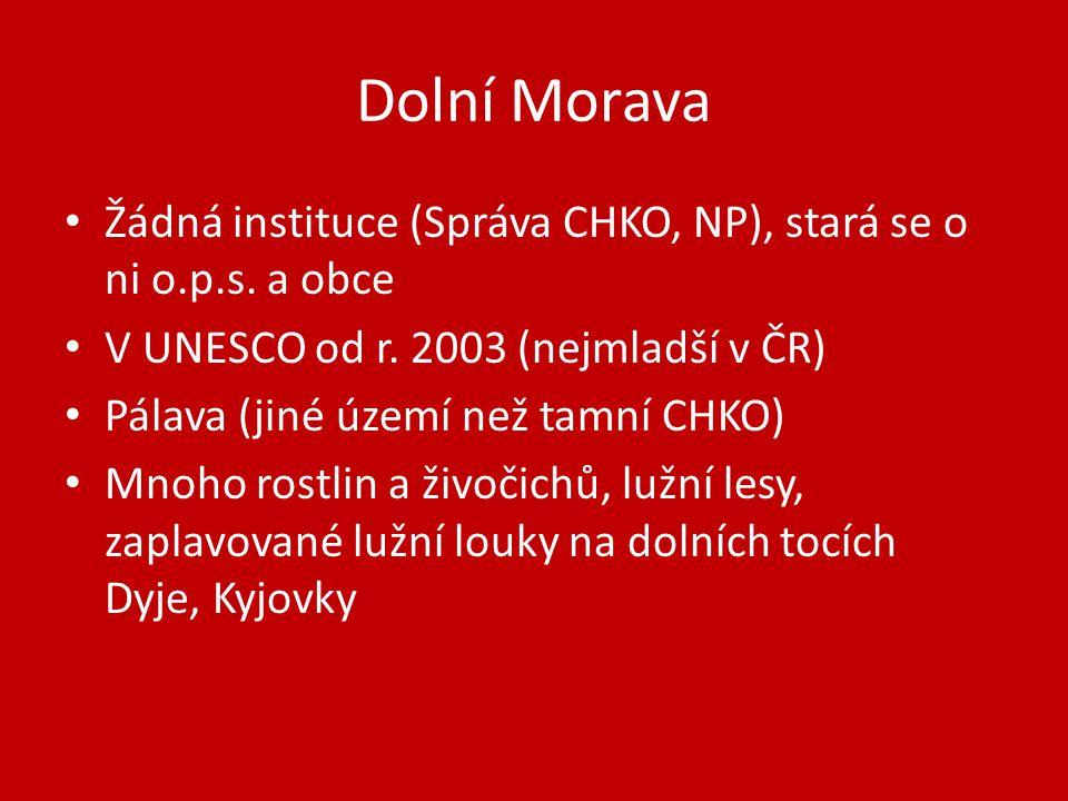 Dolní Morava Žádná instituce (Správa CHKO, NP), stará se o ni o.p.s.