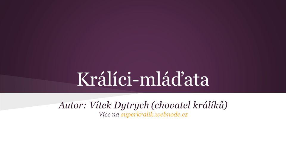 Králíci-mláďata Autor: Vítek Dytrych (chovatel králíků) Více na superkralik.webnode.cz