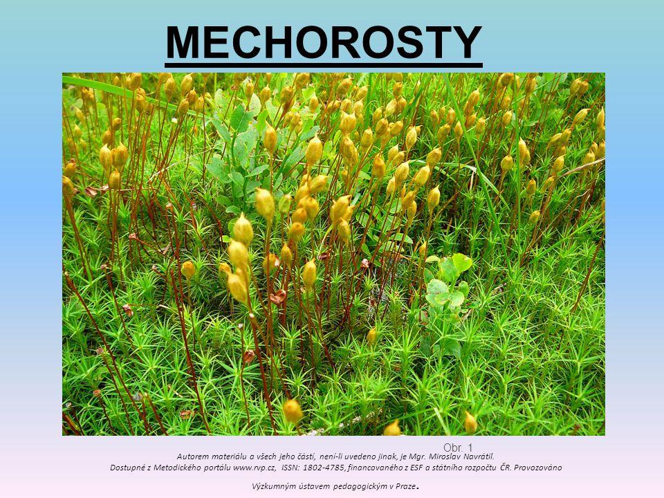 MECHOROSTY Obr. 1 Autorem materiálu a všech jeho částí, není-li uvedeno jinak, je Mgr. Miroslav Navrátil. Dostupné z Metodického portálu www.rvp.cz, I