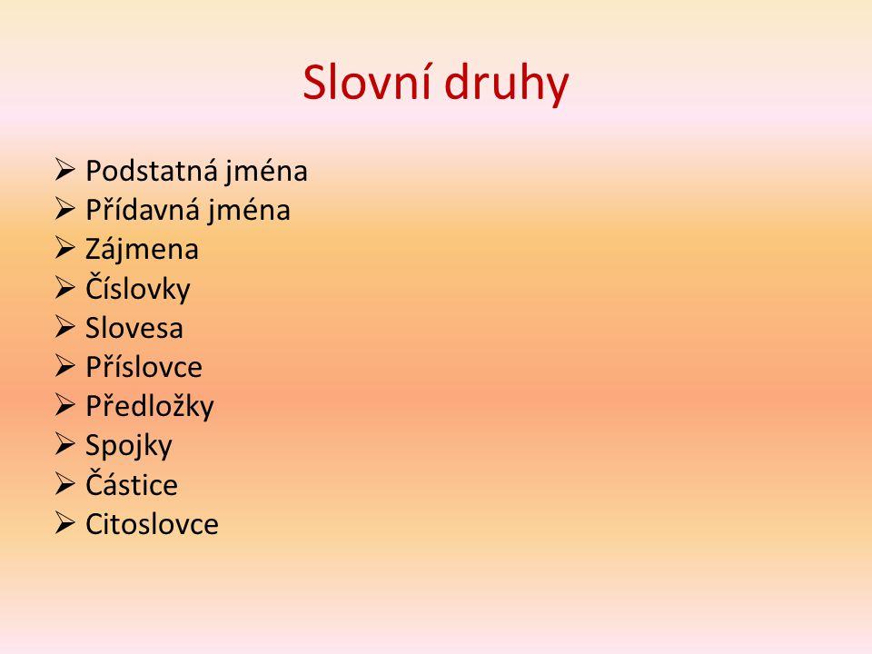 Příklady přídavných jmen malý tvrdohlavý sokolí západní veselý Mirkův Smetanův