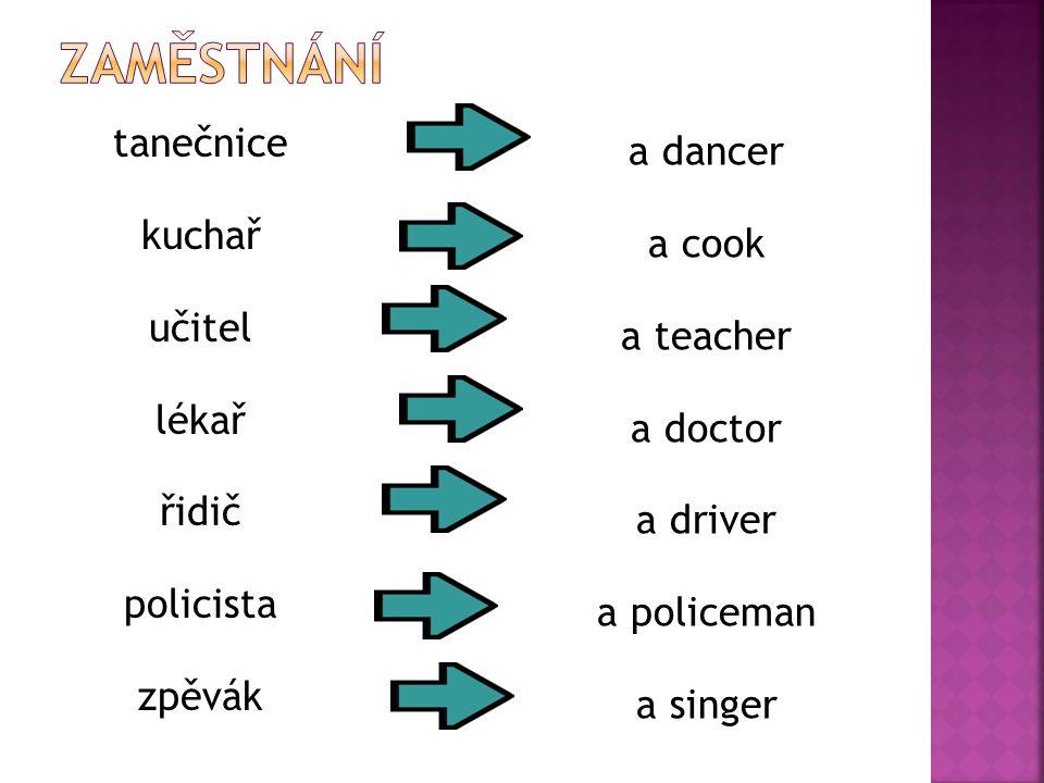 tanečnice kuchař učitel lékař řidič policista zpěvák a dancer a cook a teacher a doctor a driver a policeman a singer