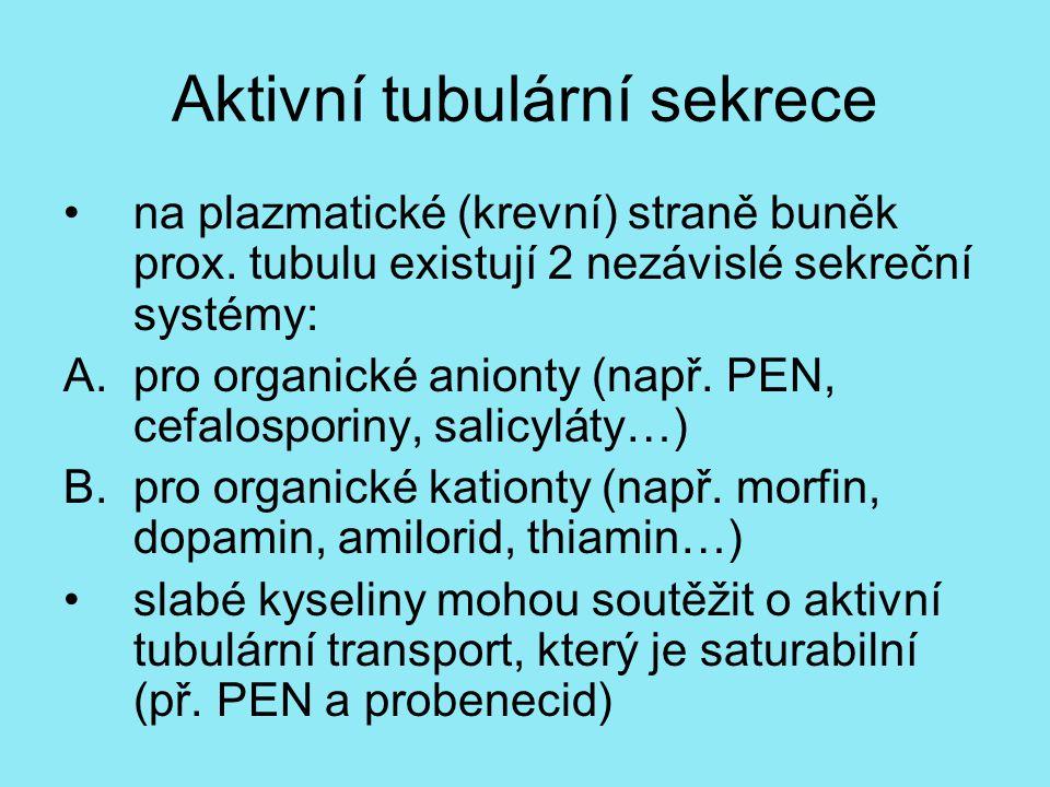 Aktivní tubulární sekrece na plazmatické (krevní) straně buněk prox. tubulu existují 2 nezávislé sekreční systémy: A.pro organické anionty (např. PEN,