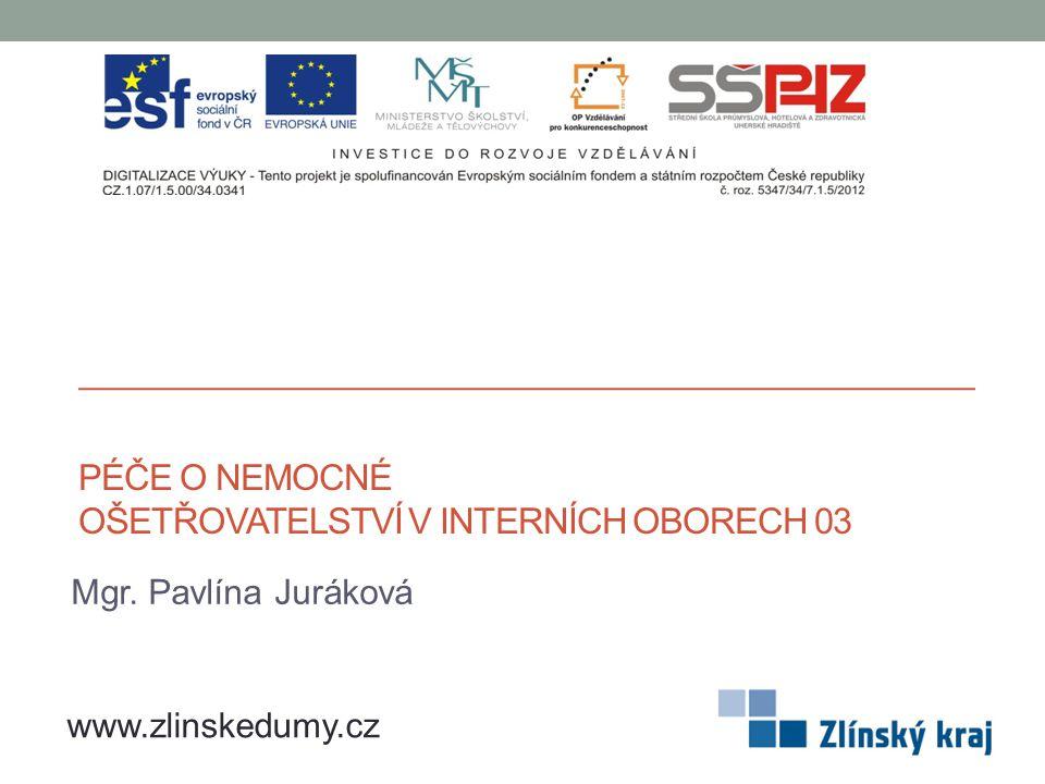 PÉČE O NEMOCNÉ OŠETŘOVATELSTVÍ V INTERNÍCH OBORECH 03 Mgr. Pavlína Juráková www.zlinskedumy.cz