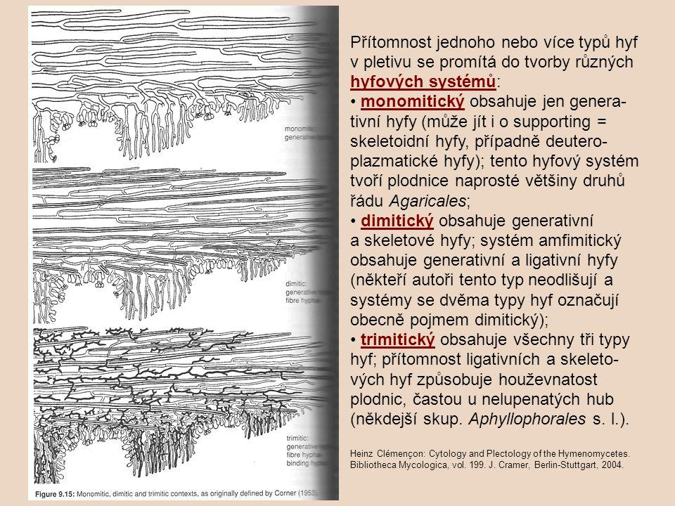 Přítomnost jednoho nebo více typů hyf v pletivu se promítá do tvorby různých hyfových systémů: monomitický obsahuje jen genera- tivní hyfy (může jít i