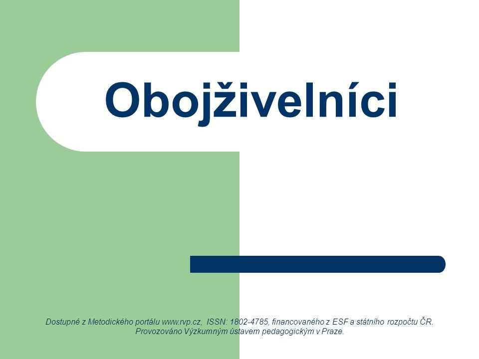 Obojživelníci Dostupné z Metodického portálu www.rvp.cz, ISSN: 1802-4785, financovaného z ESF a státního rozpočtu ČR. Provozováno Výzkumným ústavem pe