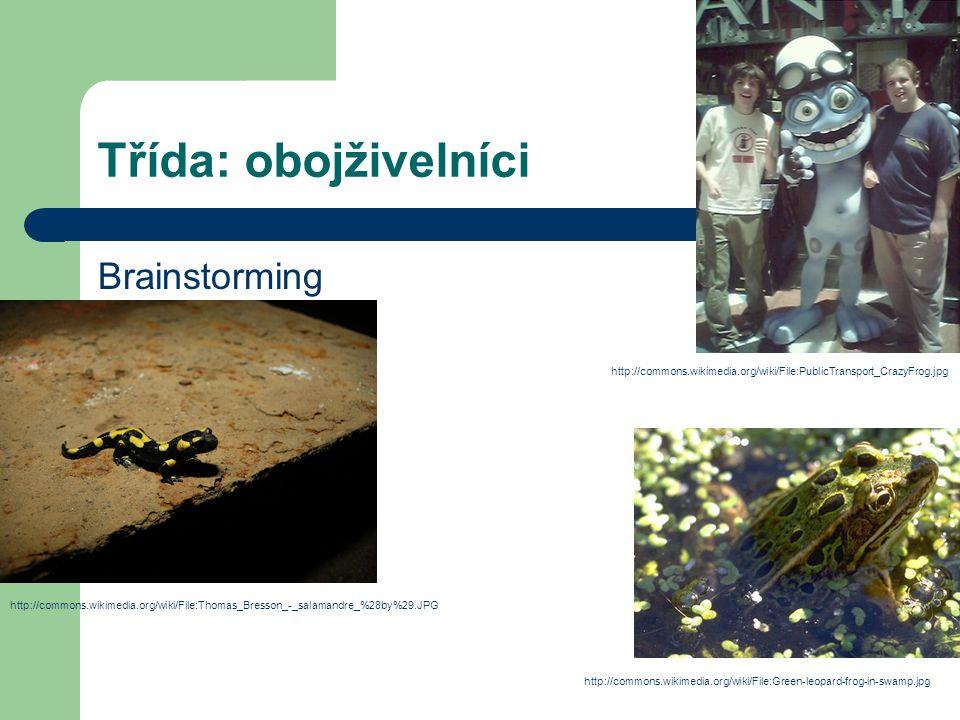 Třída: obojživelníci Brainstorming http://commons.wikimedia.org/wiki/File:Thomas_Bresson_-_salamandre_%28by%29.JPG http://commons.wikimedia.org/wiki/F