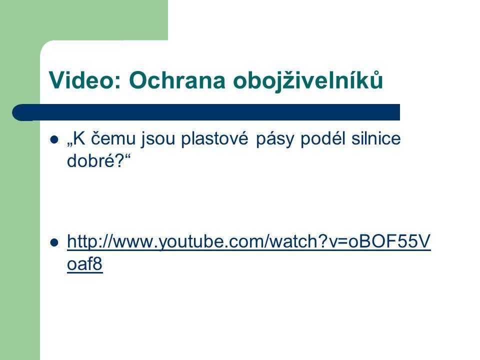"""Video: Ochrana obojživelníků """"K čemu jsou plastové pásy podél silnice dobré?"""" http://www.youtube.com/watch?v=oBOF55V oaf8 http://www.youtube.com/watch"""
