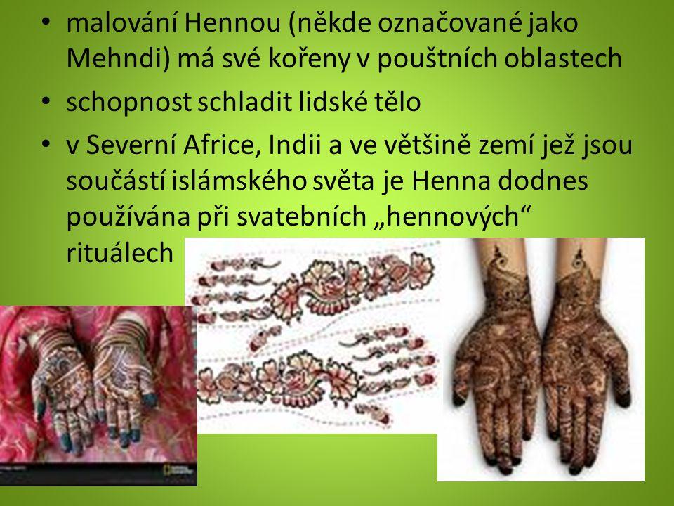 """malování Hennou (někde označované jako Mehndi) má své kořeny v pouštních oblastech schopnost schladit lidské tělo v Severní Africe, Indii a ve většině zemí jež jsou součástí islámského světa je Henna dodnes používána při svatebních """"hennových rituálech"""